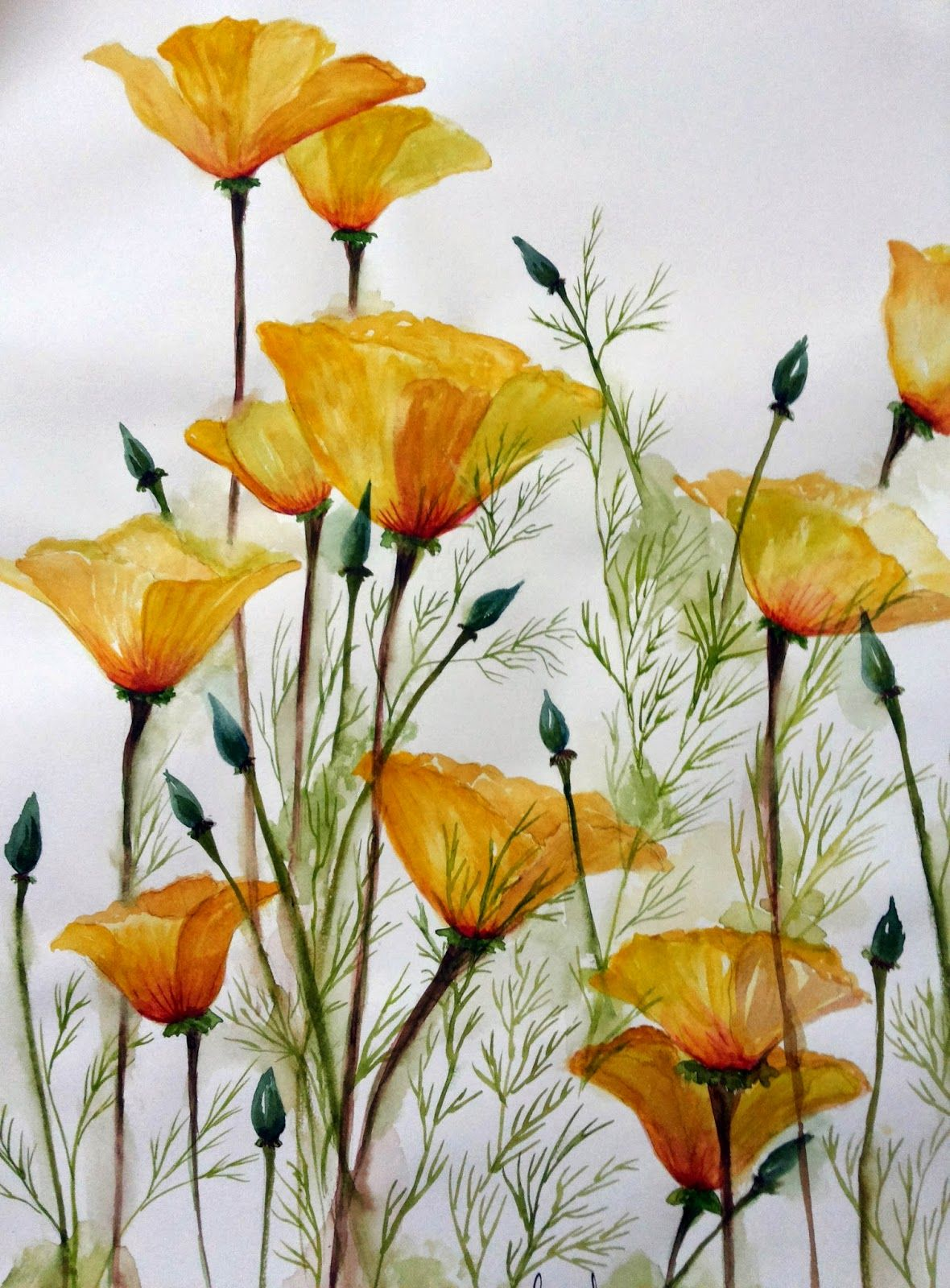Watercolor: Garden-Inspired Bouquet, California poppies ...