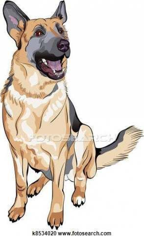 Dogs Funny Illustration German Shepherds 29+ Ideas