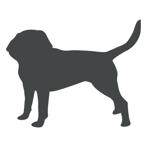 Dog Puppy Silhouette Posing Ad Paid Ad Puppy Silhouette Posing Dog Dog Silhouette Wild Dogs Pet Dogs