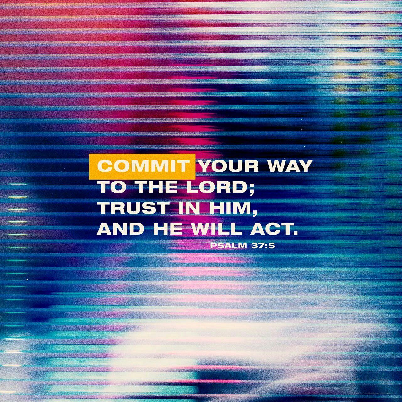 February 16 2019 Salmos Verso Da Biblia