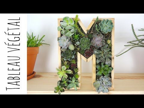 diy tableau v g tal de plantes grasses youtube green diy pinterest. Black Bedroom Furniture Sets. Home Design Ideas