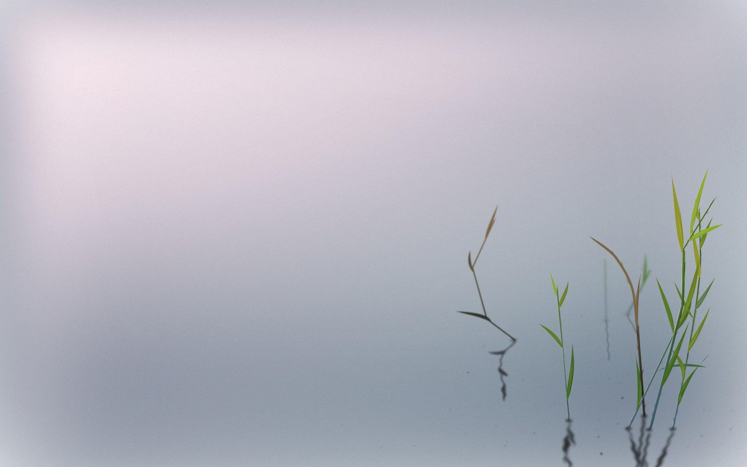 The Light of Zen by it s on deviantART Minimalist