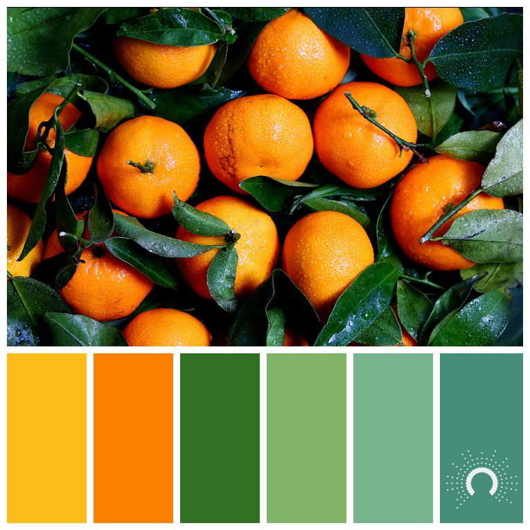 Color Palette, Color Combination, Farbpalette, Hue, Orange