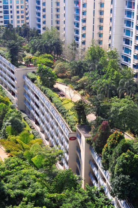 Hdb Carpark Roof 180 Edgefield Plains Singapore By Skyrise Greenery Green Roof Garden Green Roof Roof Garden
