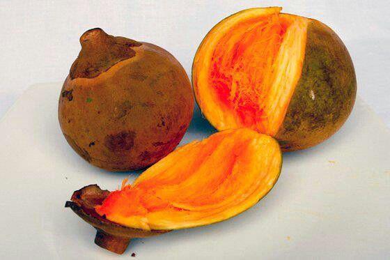 Zapote Serious Eats Fruit Healthy Fruits