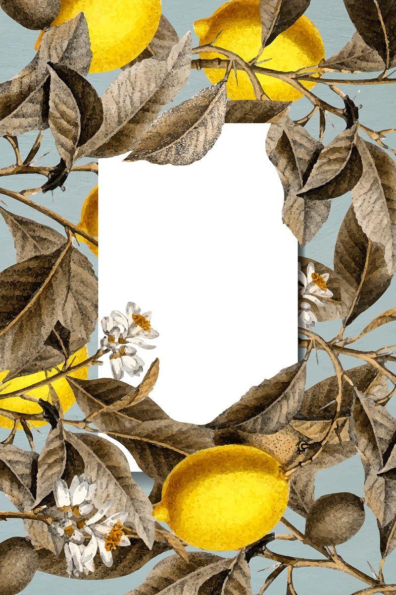 Download Premium Vector Of Blank Tropical Lemon Card Vector 892671 Floral Poster Orange Texture Floral Banners