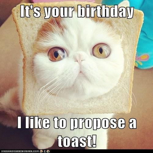 Funny Birthday Quotes Best Sayings