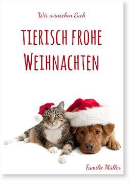 Tierische Weihnachtsgrüße.Tierische Weihnachtsgrüße Sprüche Weihnachtsgrüße Weihnachten