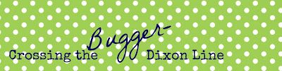 Crossing the Bugger-Dixon Line: DIY Nautical Party: Pie Tin Cake Plate Tutorial