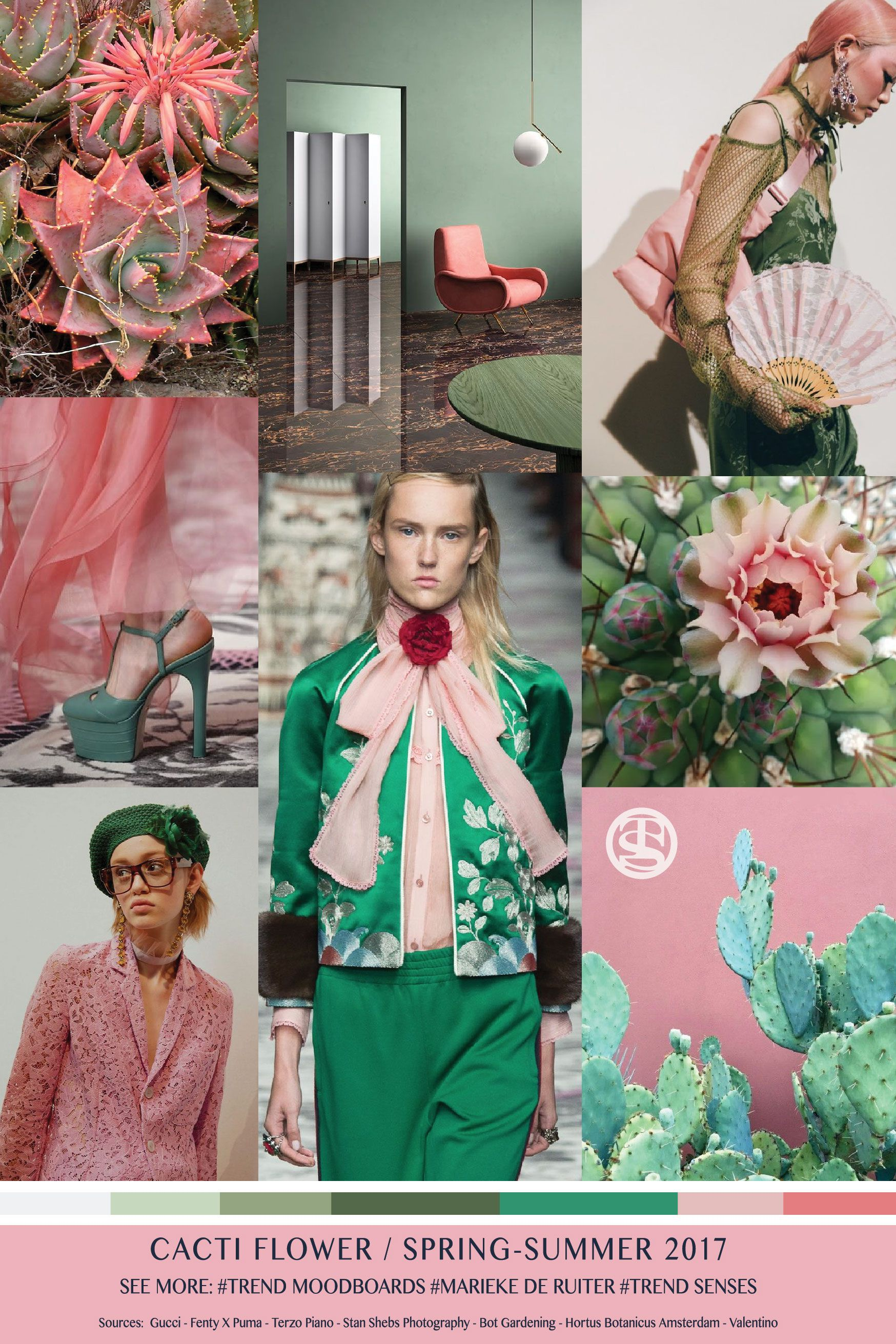 foto de Moodboard Cacti Flower Spring Summer 2017 We collect and select We research and reflect