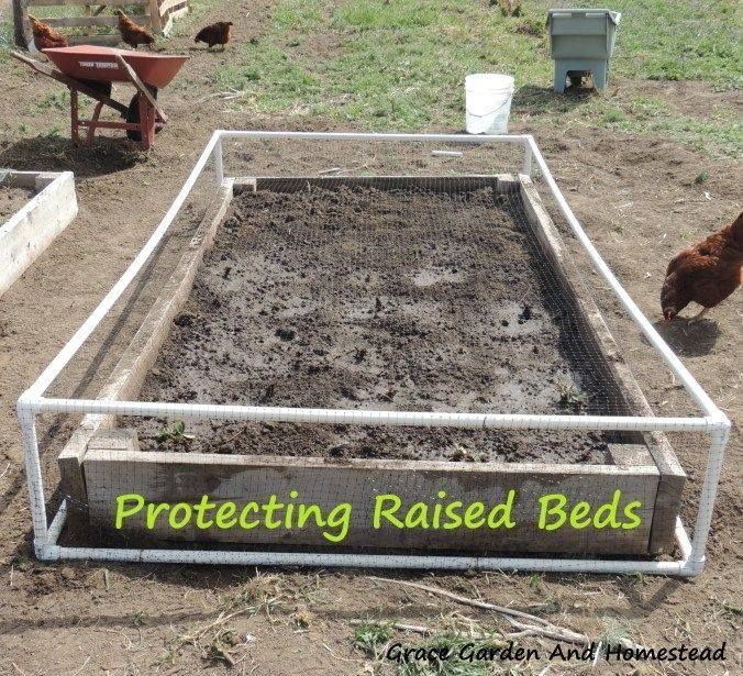 A Cheap And Quick Way To Cover Your Raised Beds To Keep