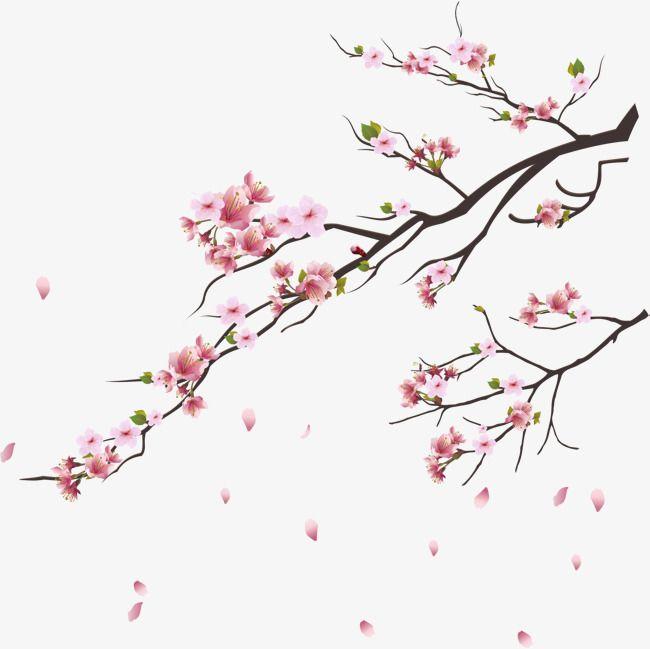 Pink Cherry Blossoms Cherry Blossom Art Cherry Blossom Drawing Cherry Blossom Painting
