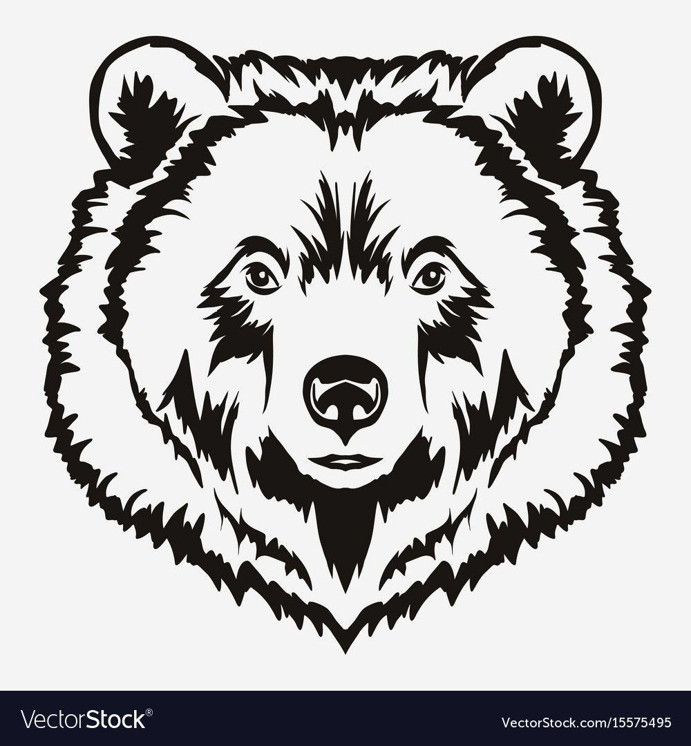 Bear Head Cartoon Royalty Free Vector Image Vectorstock Ad Cartoon Royalty Bear Head Ad Bear Face Drawing Bear Drawing Bear Silhouette