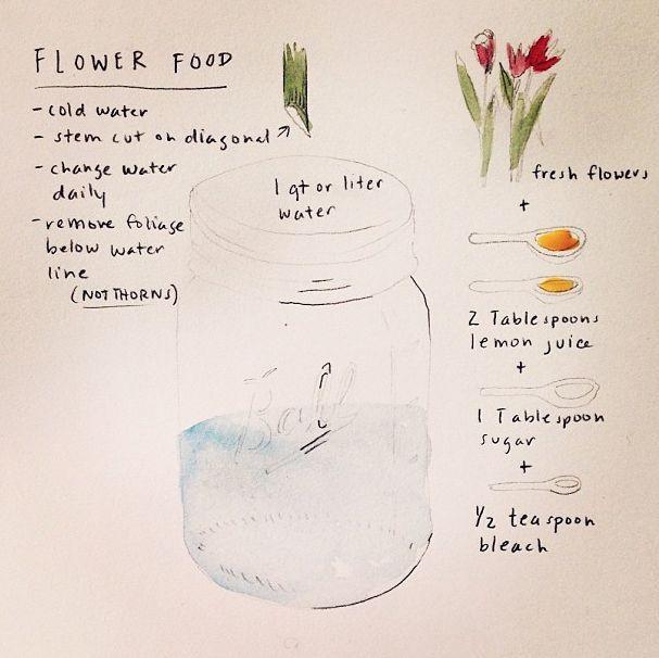 Flower Food Diy Flower Food Diy Flower Food Flowers