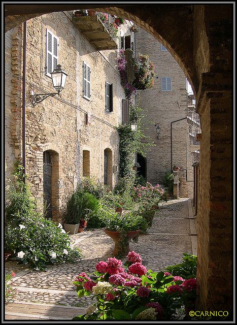 Acquaviva Picena,province of Ascoli Piceno  Marche