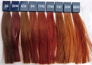 Haarfarben Palette Rottöne Bing Images Haarfarbe Haarfarben