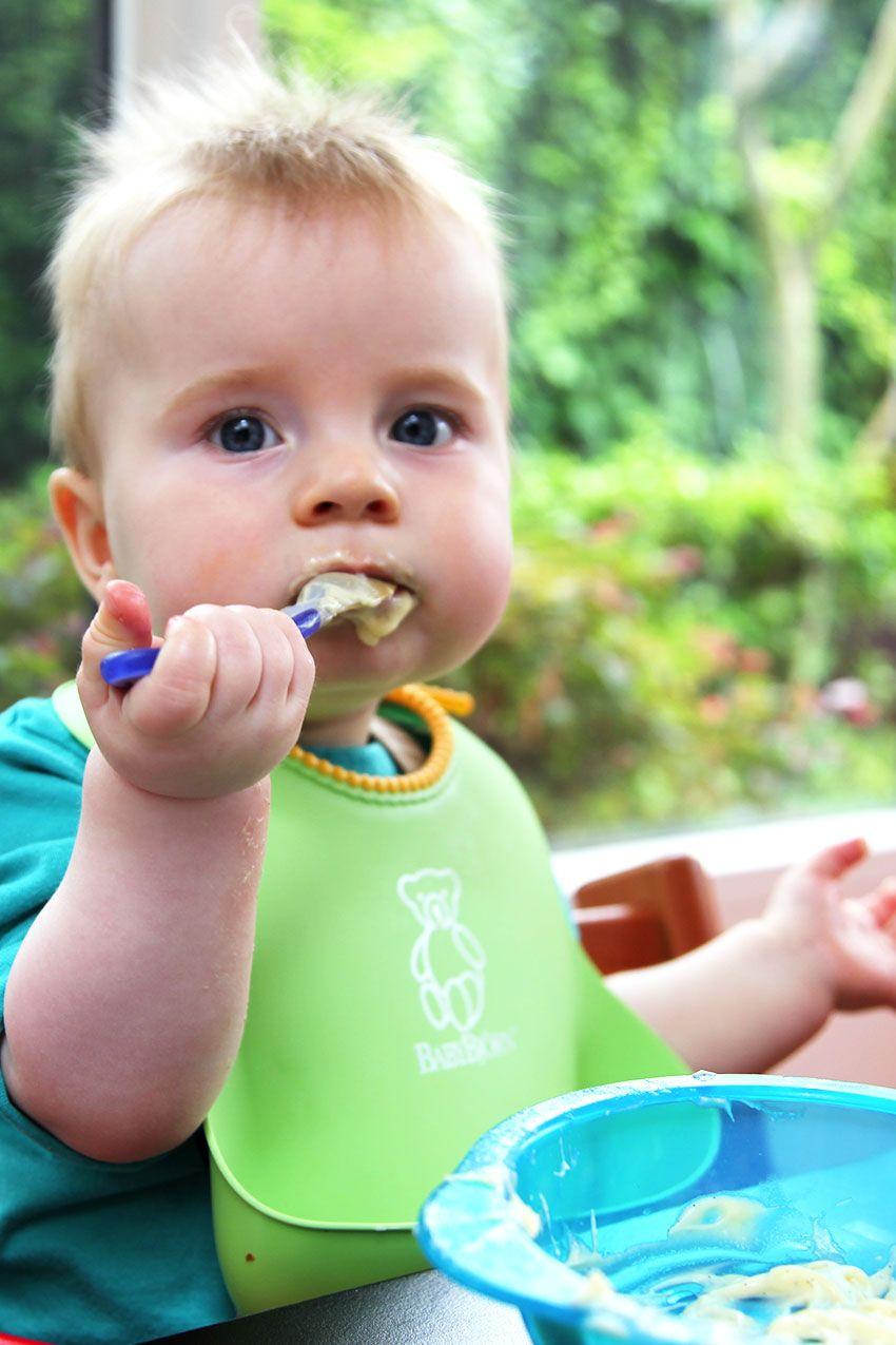 Sugar Free Custard for Baby - Little Big H