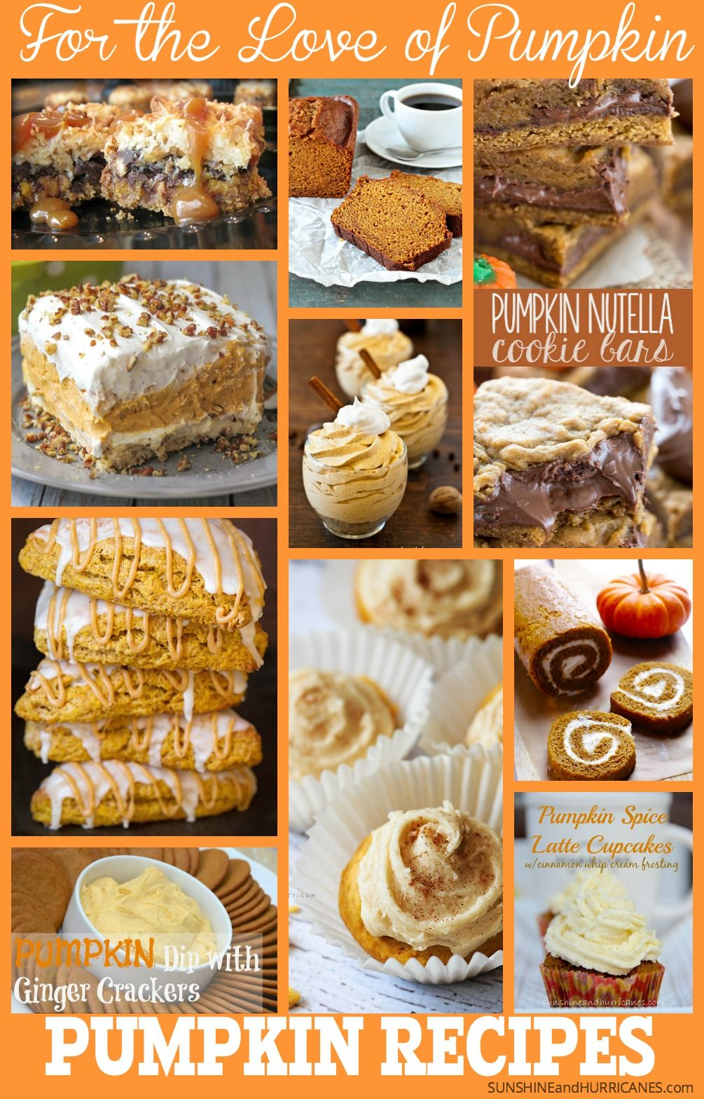 You can feel it right? The slight chill in the air that means fall is coming. Of course, nothing means fall more than pumpkin! If you are a true pumpkin lover, who can't resist the slightly sweet and slightly spicy smell and taste of pumpkin, then these pumpkin recipes are for you! The best of the best we could find, now all you need to do is bake a batch and curl up on the couch with your favorite book or bingeworthy TV.  For the Love of Pumpkin - Pumpkin Recipes. SunshineandHurricanes.com