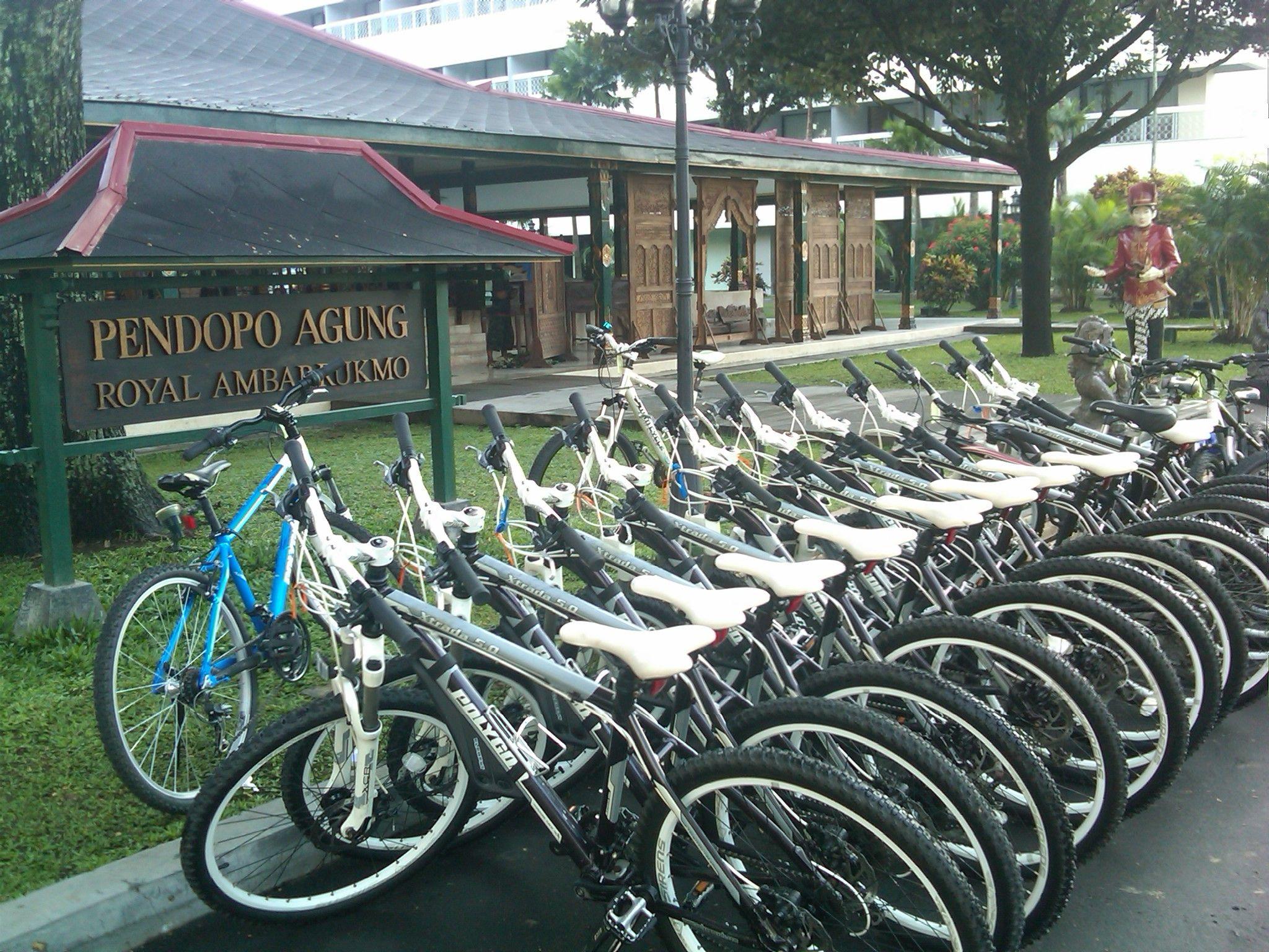 Sewa Sepeda Gunung Di Jogja Sepeda Gunung Ada 85 Sepeda