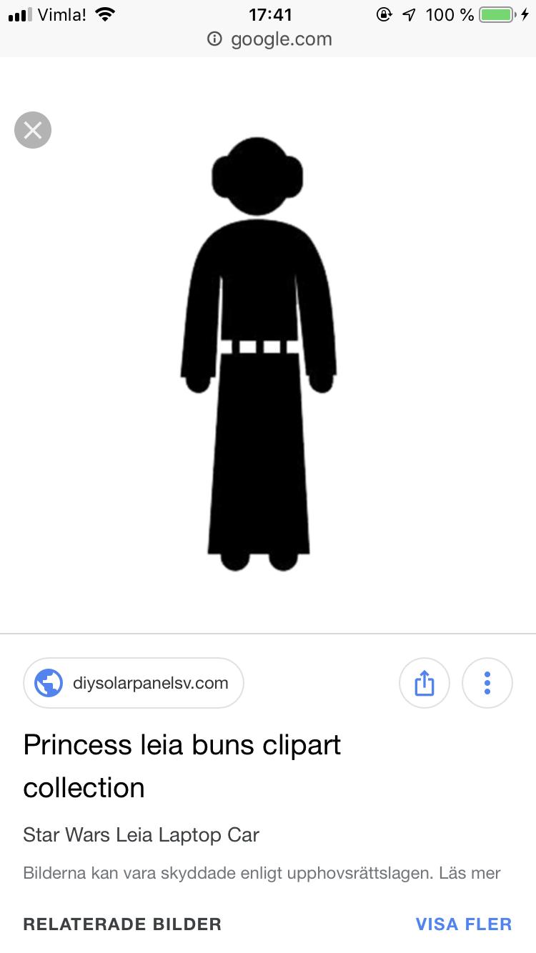 princess leia buns silhouette