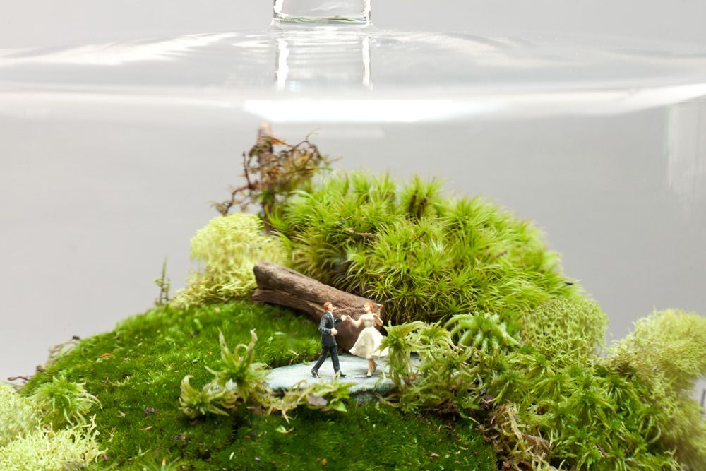 Another Set Of Cute Figurines From Tiny World Terrariums Tiny