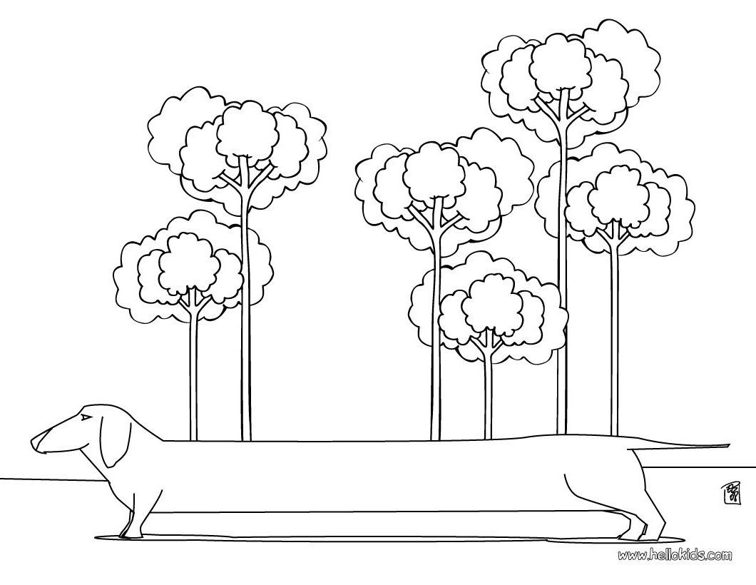 32++ Dachshund coloring pages printable ideas