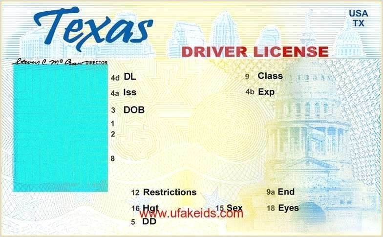 Texas Driver License Template in 2020 Id card template