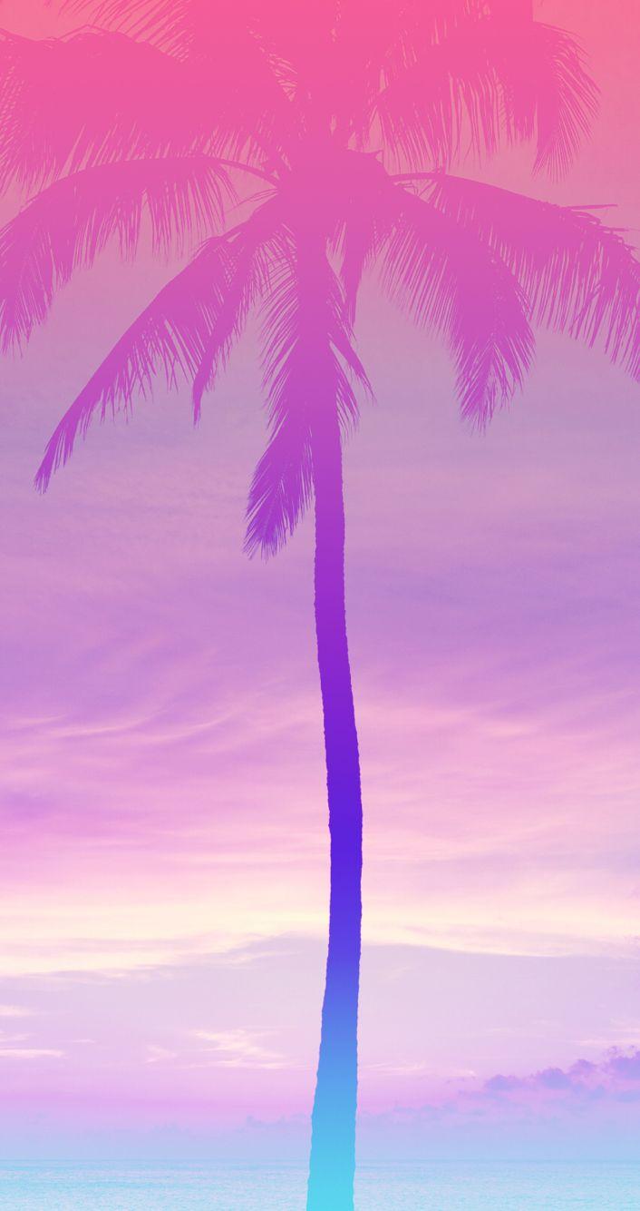 Pink Palms Arvore De Papel De Parede Papel De Parede De Verao Papel De Parede Do Iphone