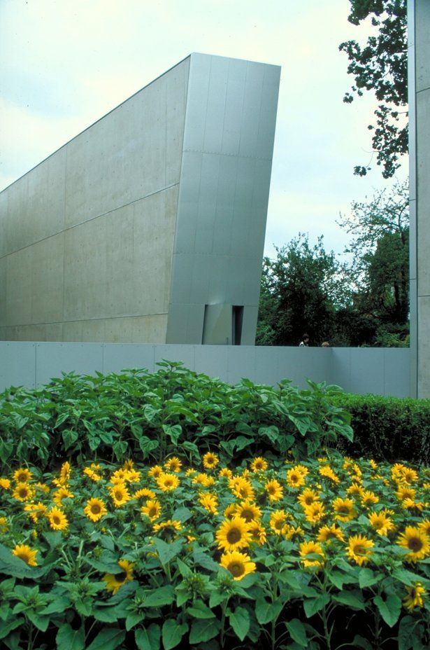 Sunflower Garden and Gang Exterior   Felix Nussbaum Haus  Osnabrück, Germany,  by Daniel Liebeskind