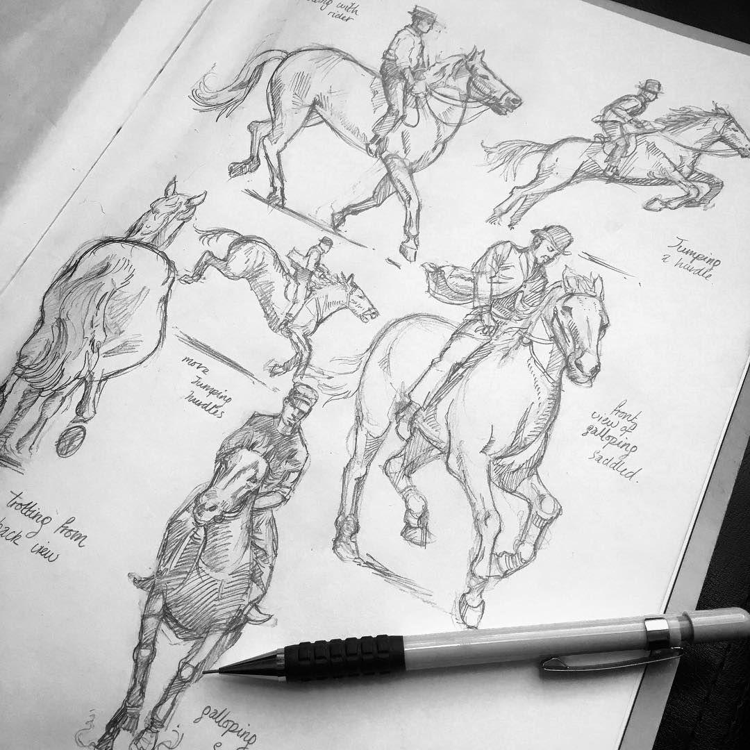 Pin De Julian Garcia En Dibujo Con Imagenes Anatomia Animal