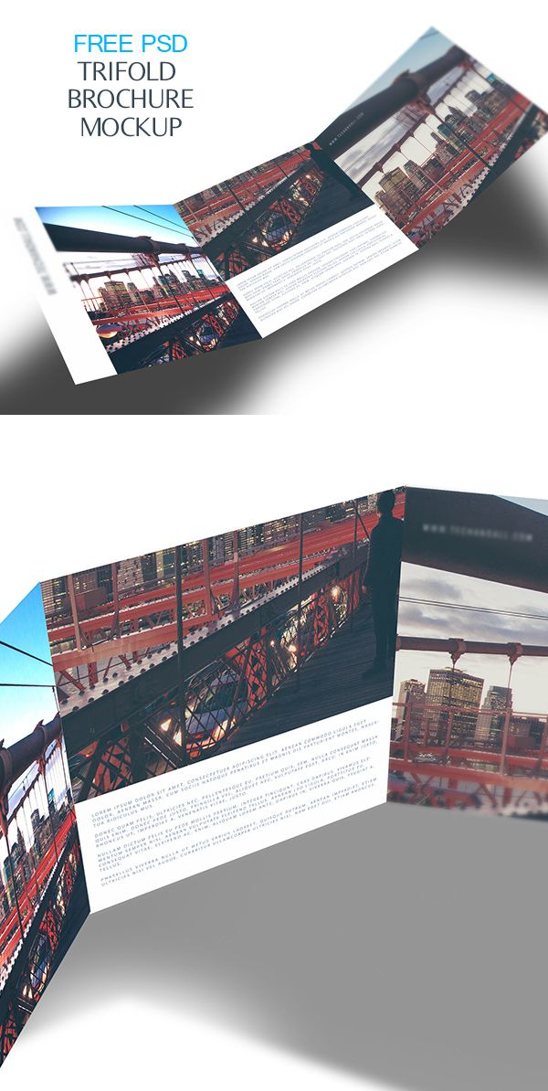 Free Tri Fold Brochure Psd Mockup  Mockups    Tri Fold