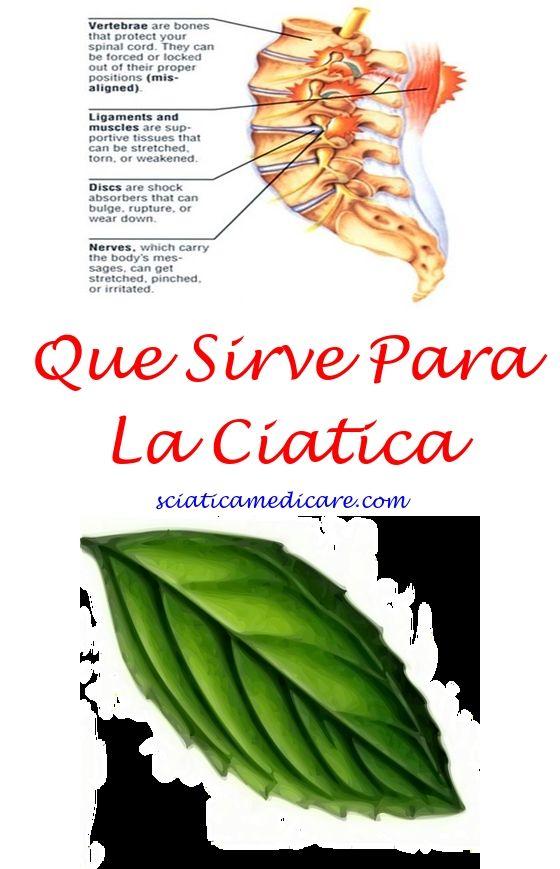 Nervio Ciatico En Perros Anatomia   Pinzamiento Nervio Ciatico ...