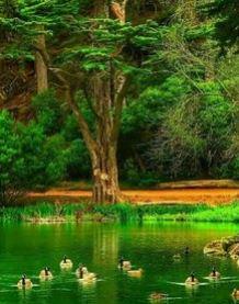 اجمل صور خلفيات شاشة من الطبيعة صور خلفيات Hd من الطبيعة صور طبيعه و مناظر طبيعية Nature Photography Amazing Nature Photography Amazing Nature