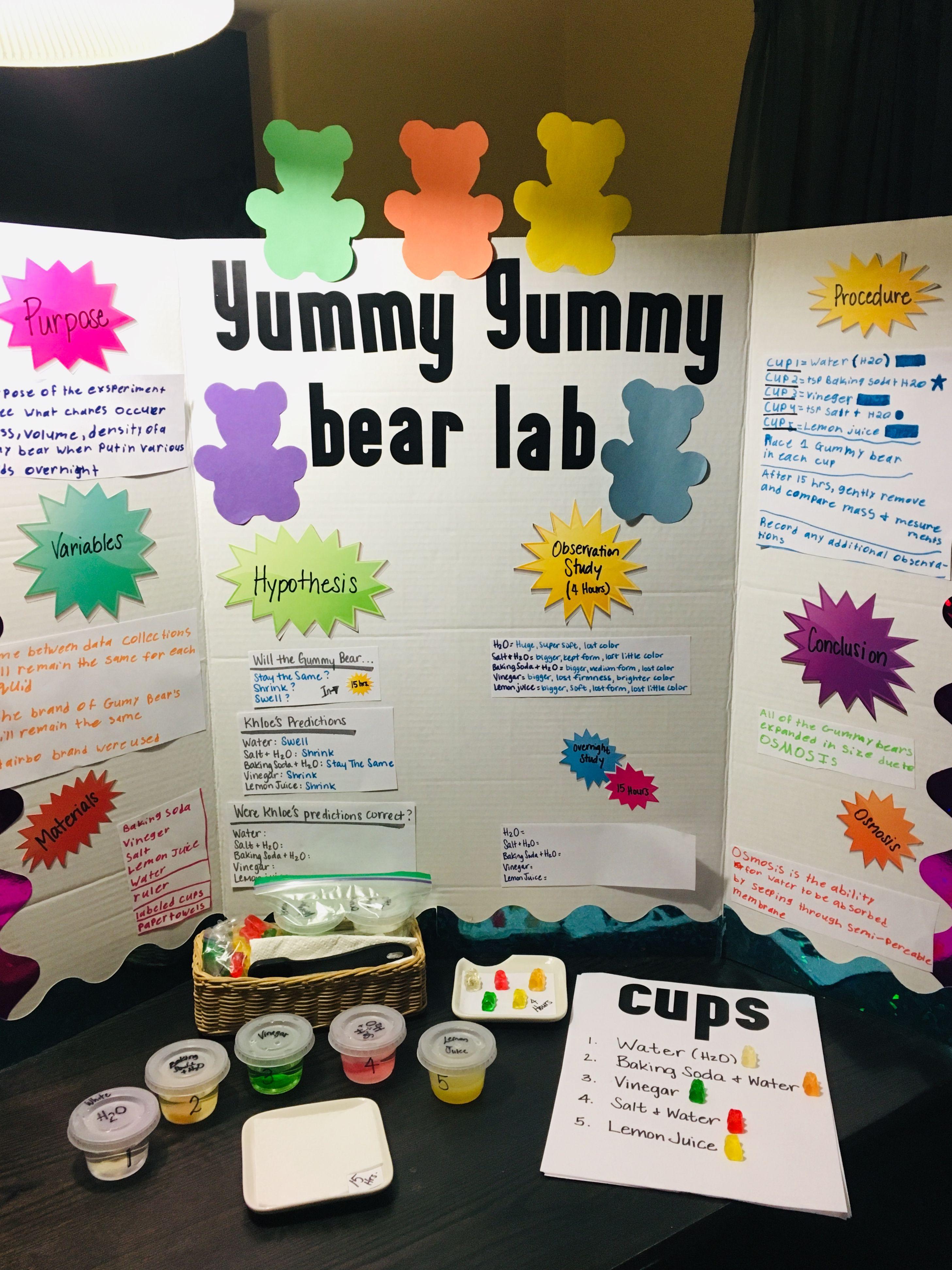 Yummy Gummy Bear Lab