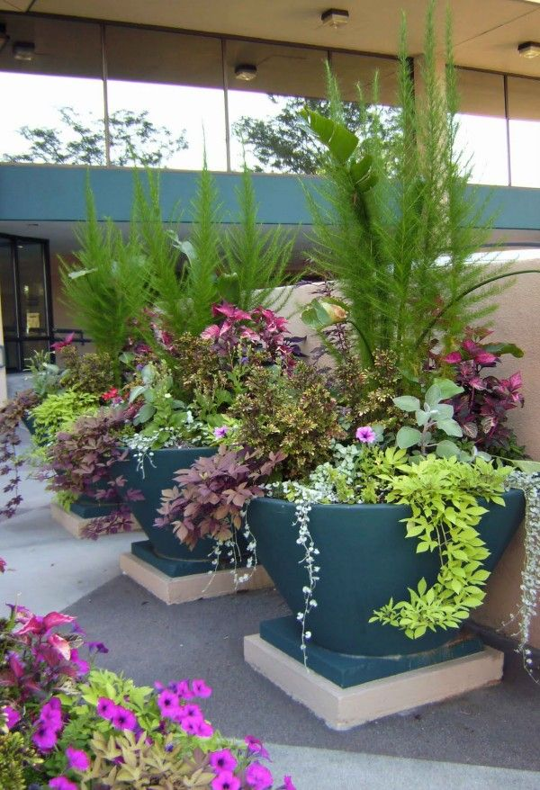 30 unique garden design ideas dont forget to add height with tall plants and - Container Garden Design Ideas