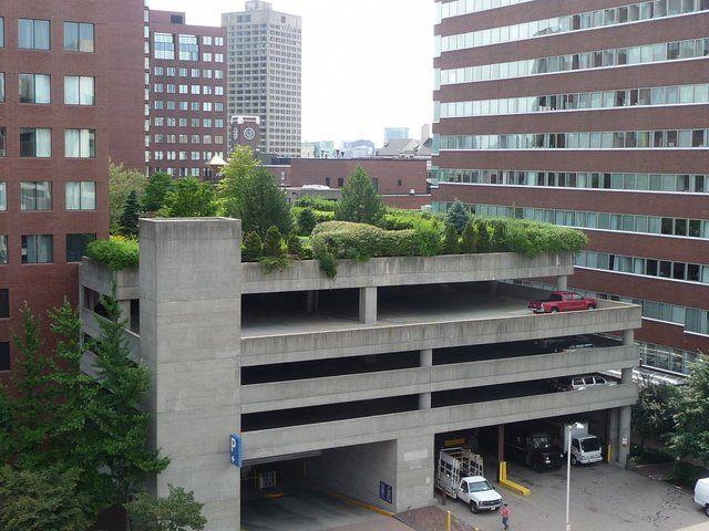 Cambridge Center Roof Garden Seen From Top Of Parking