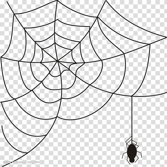 Spider Web Spider Transparent Background Png Clipart Clip Art Spider Web Drawing Mandala Coloring Books