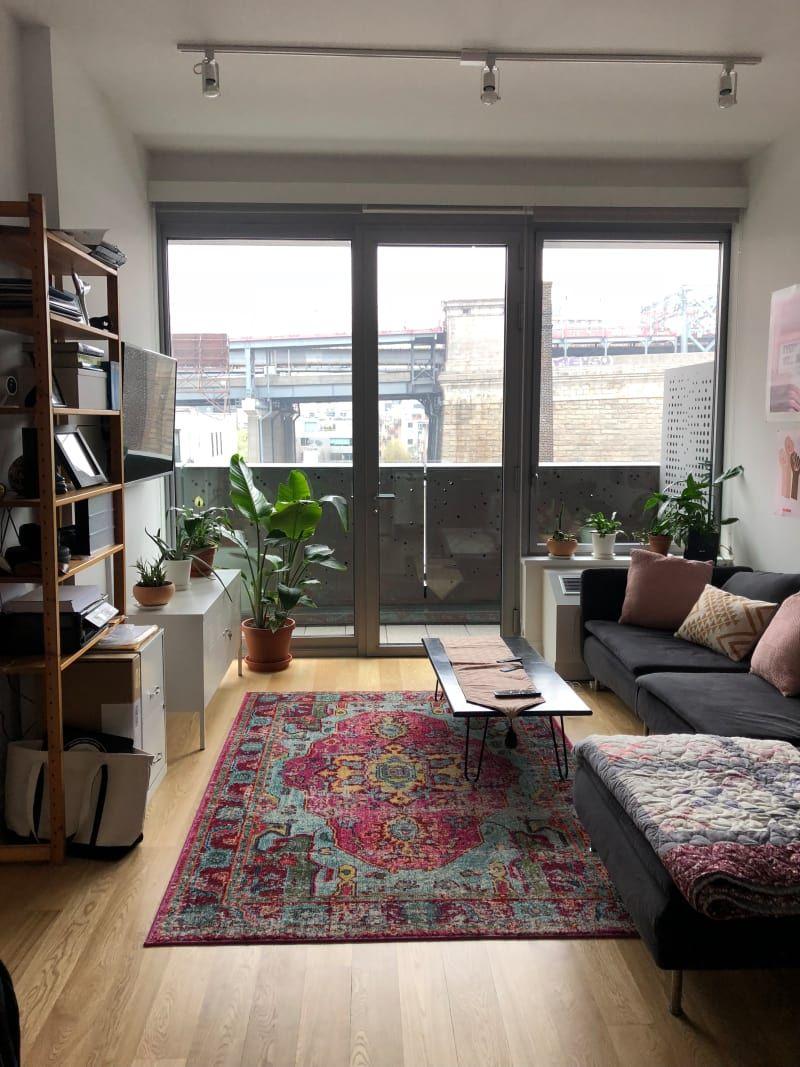 A Boho Minimalist Plant Lady's Brooklyn Rental in 2020 ...