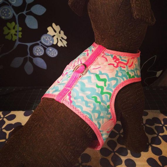 Custom Made Lilly Pulitzer Inspired Kimono Walking Harness