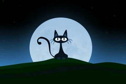 Les Chats Cat Phone Wallpaper Cartoon Wallpaper Cartoon Cat