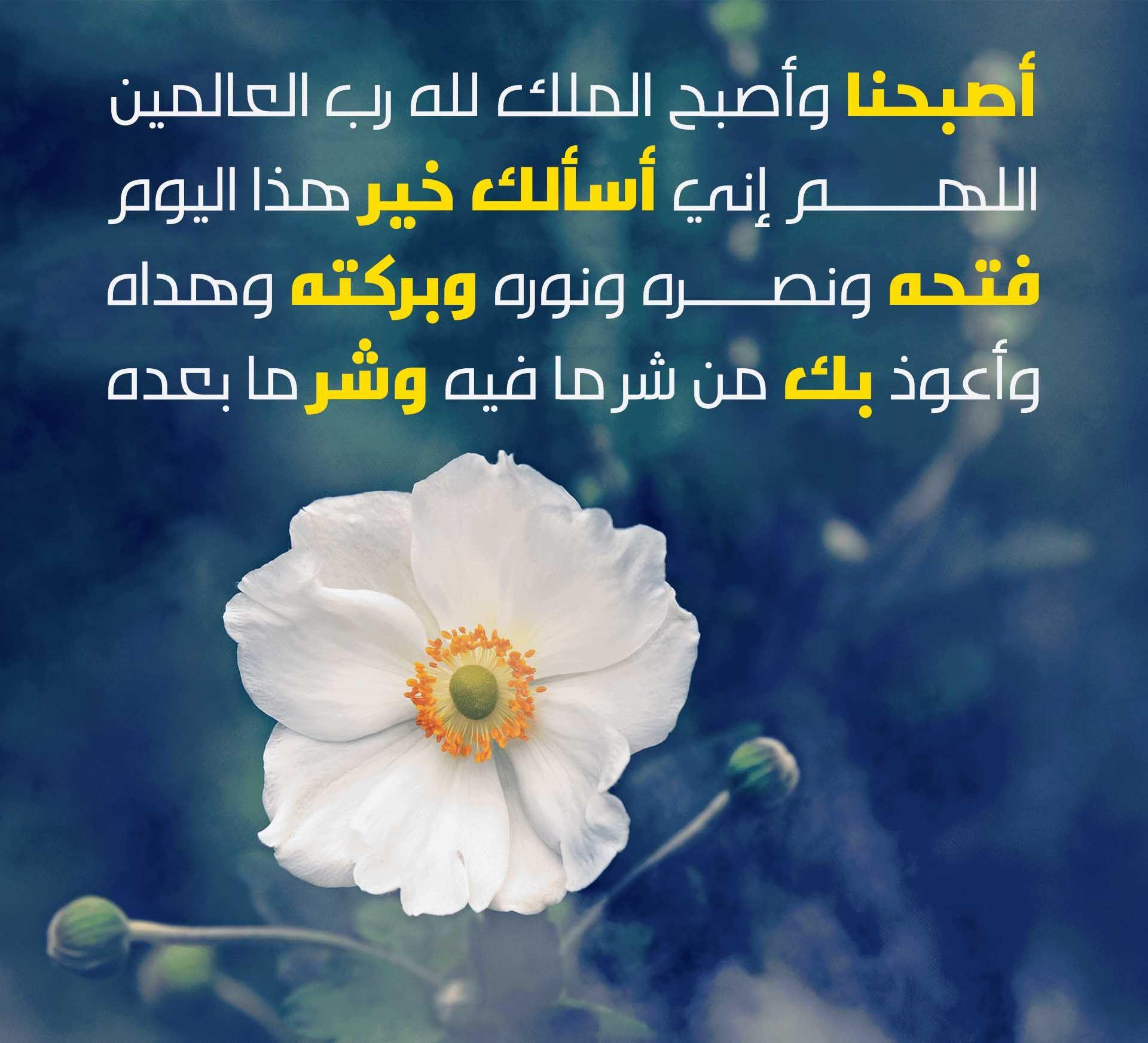 صور مكتوب عليها اصبحنا واصبح الملك لله صور صباحية اجمل صور صباح الخير Happy Flowers Image Islam