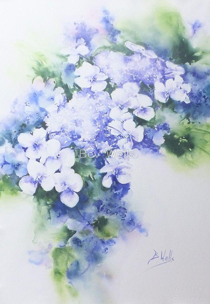 Hydrangea Bev Wells Hydrangea Painting Watercolor Hydrangea
