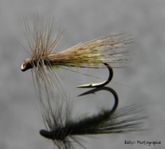 Photo of Successful start to the season in dry and visible nymphs – The blog of bailfly.over-blog.com