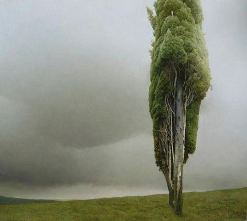 turecepcja:  Paintings byMarzio Tamer