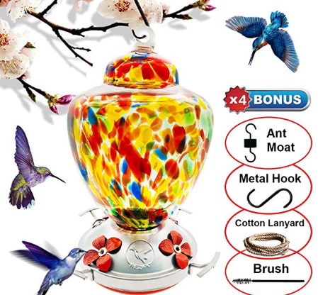 Easy To Clean The Clear Glass Makes Seeing Red Hummingbird Nectar Easy For Refilling And Cleaning Purposes Hand Blown Glass Humming Bird Feeders Glass Blowing