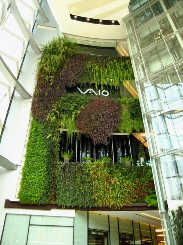 Wandbegrünung vertikale wandbegrünung sony vaio büro interieur design greenwall