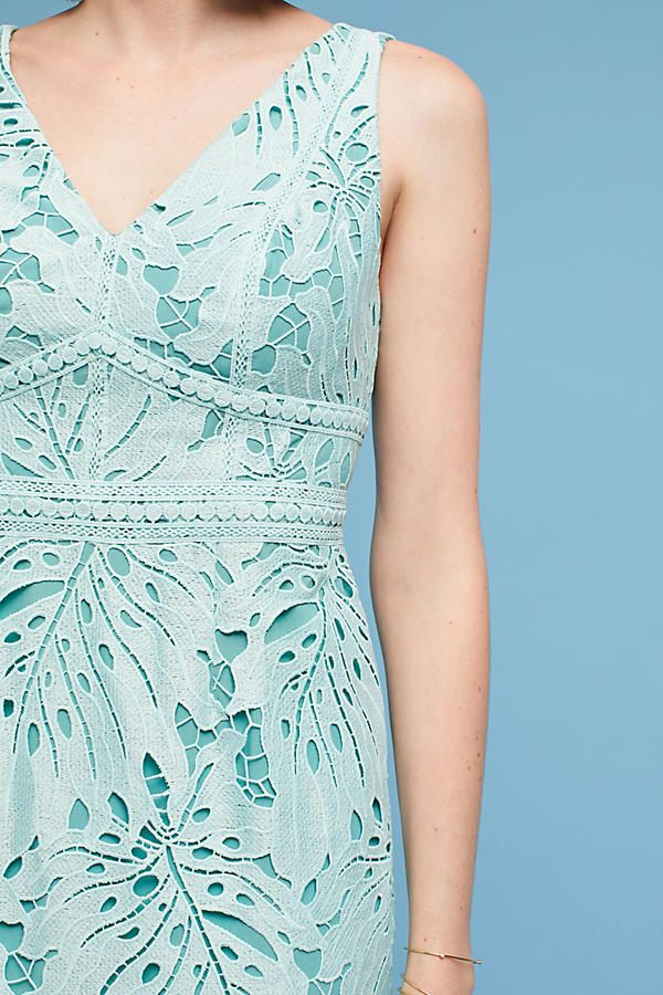 33abbc39f17b Gardenia Lace Column Dress | Fashion | Column dress, Dresses, Fashion