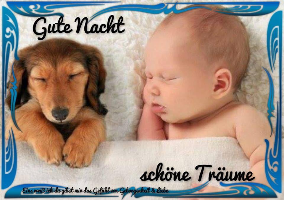 Klicke Hier Um Dein Gb Bild In Voller Grosse Zu Sehen Hunde Und Kinder Babyhunde Haustiere
