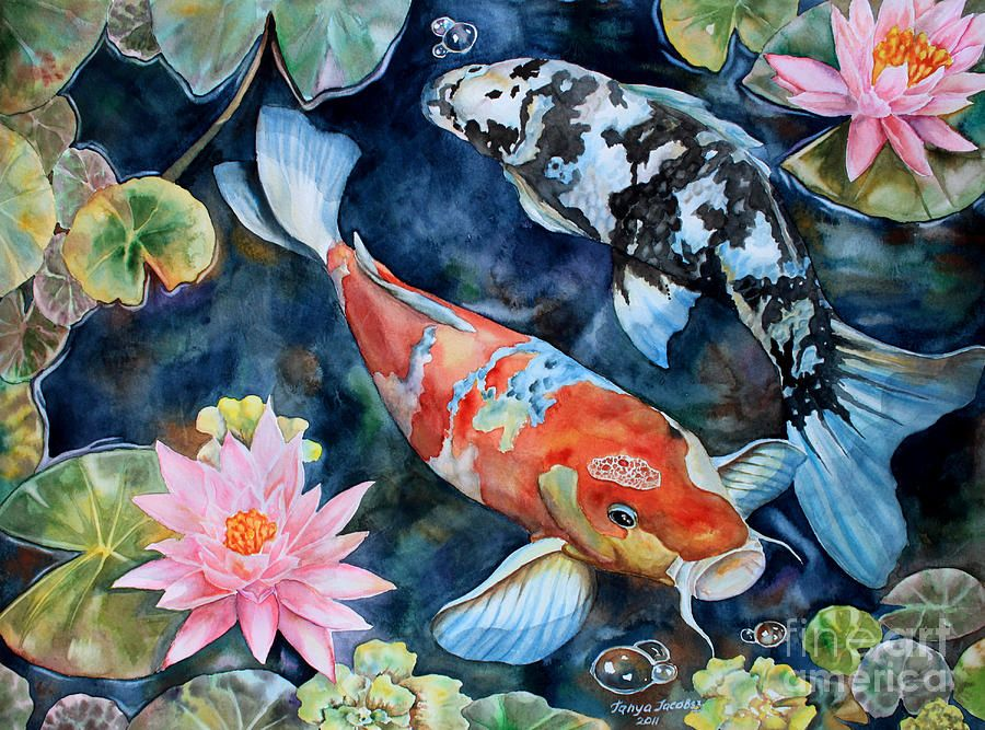 Koi With Water Lilies By Tanya Jacobsz Koi Painting Koi Fish