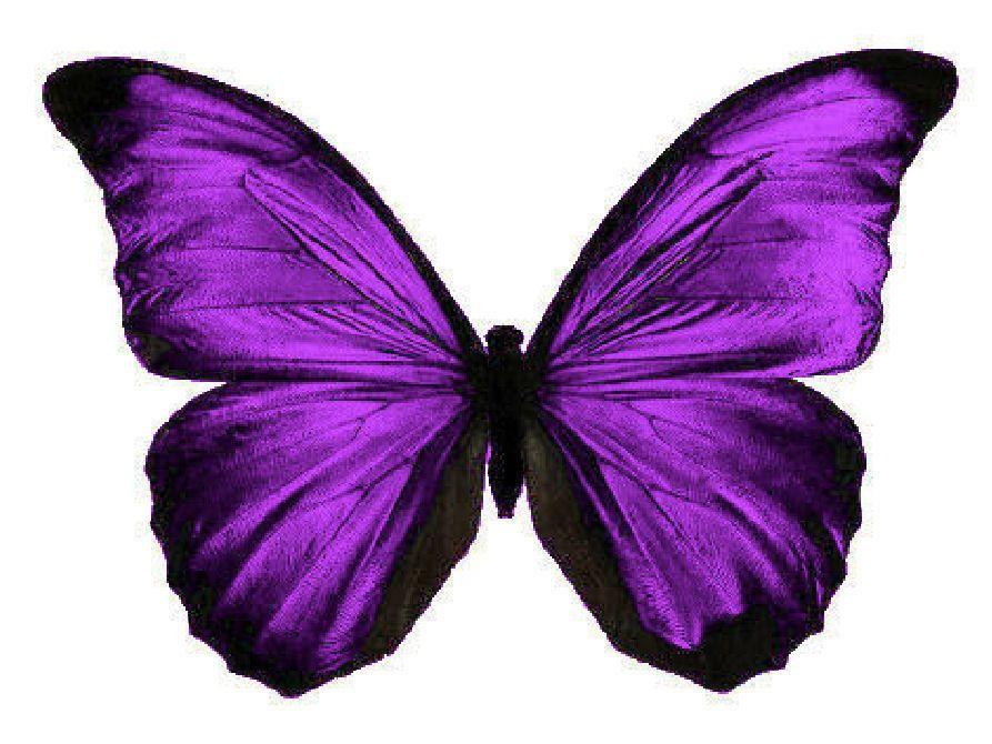 24 x stunning cadbury purple butterflies edible